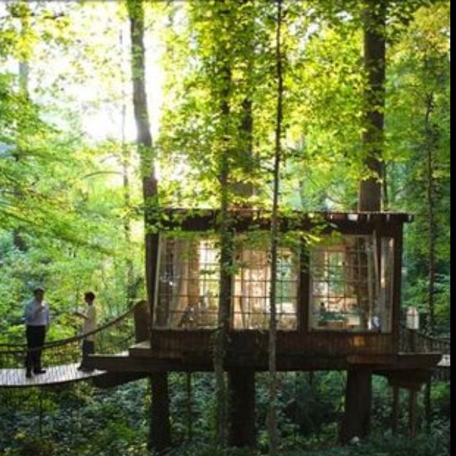 Treehouse continued! http://abeautifulmess.typepad.com/my_weblog/2010/01/a-dream.html