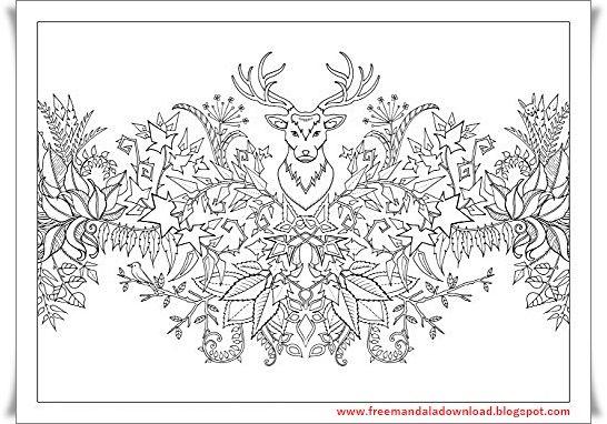 enchanted forest mandala-7 | malvorlagen, mandala