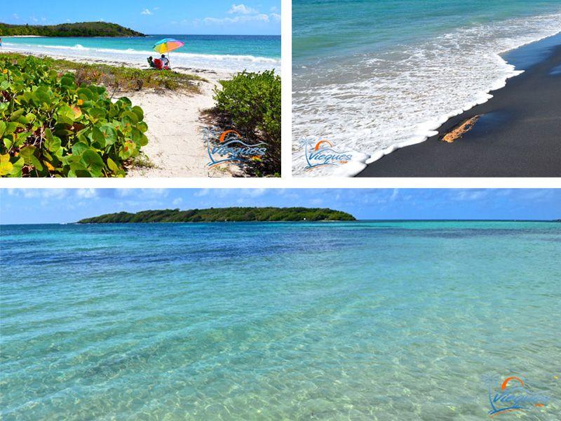 Beaches - Vieques Island, Puerto Rico puerto rico Pinterest