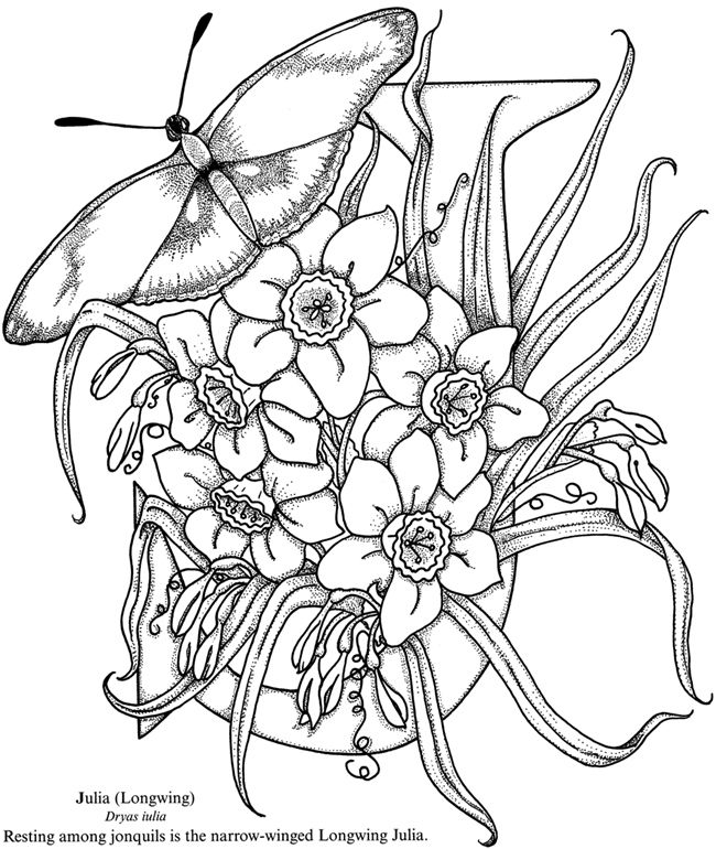 Butterfly Alphabet Coloring Book Dover Publications