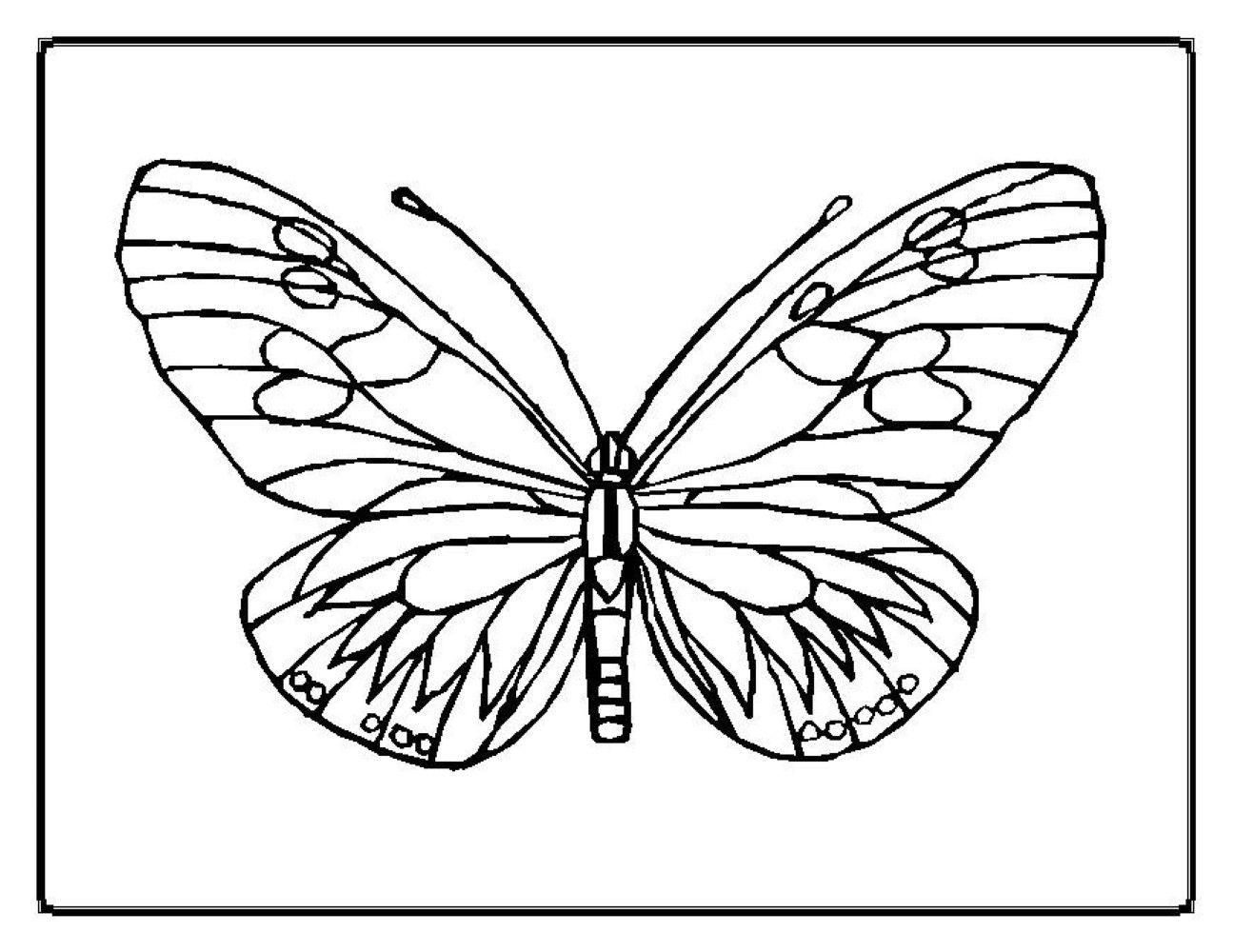 Bee and butterfly coloring pages - Butterfly Coloring Pages 07 Jpg 1295 1000