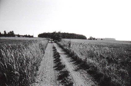 Photo 1011969-1000