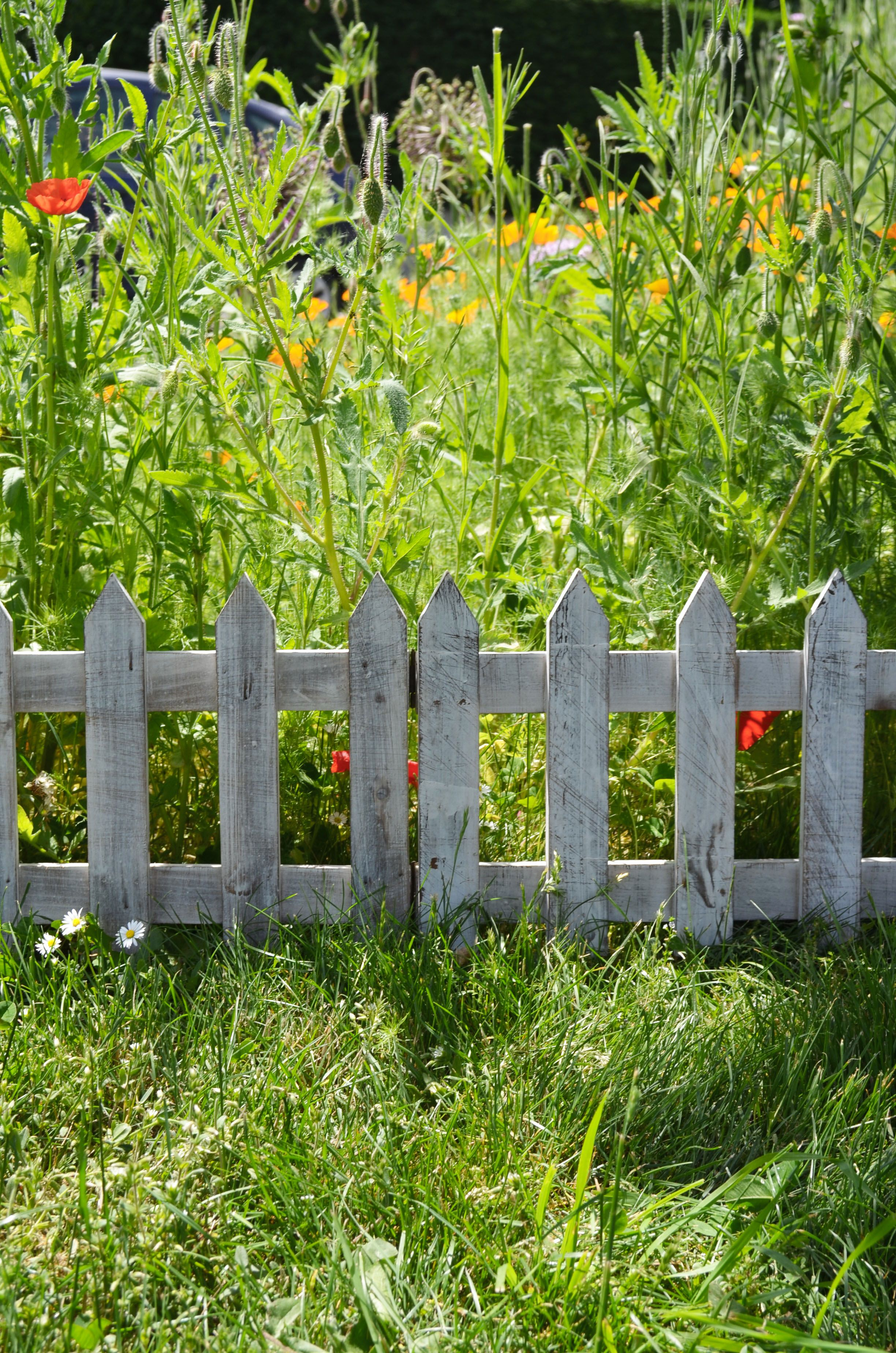 Bordure de jardin articulée en bois de sapin pour la décoration de l ...