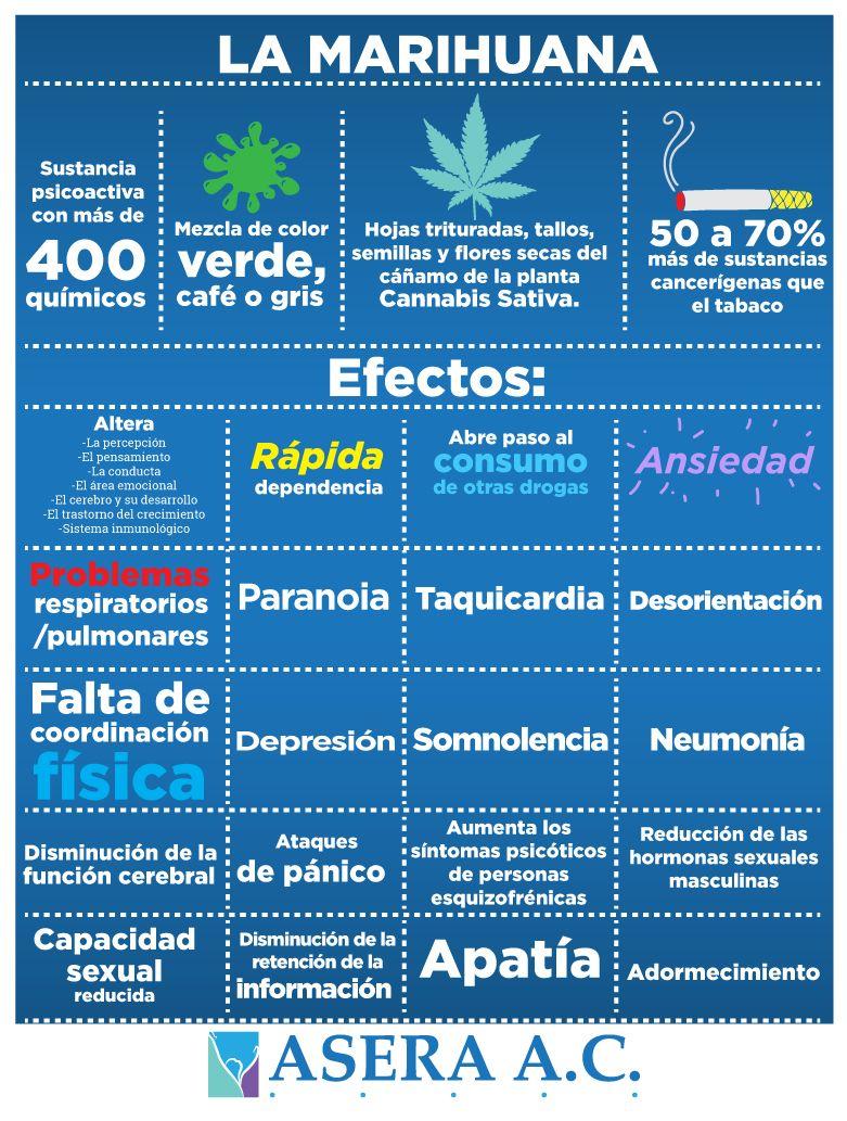 La #marihuana y sus efectos. #Infografía sobre #Adicciones. #AceraAC ...