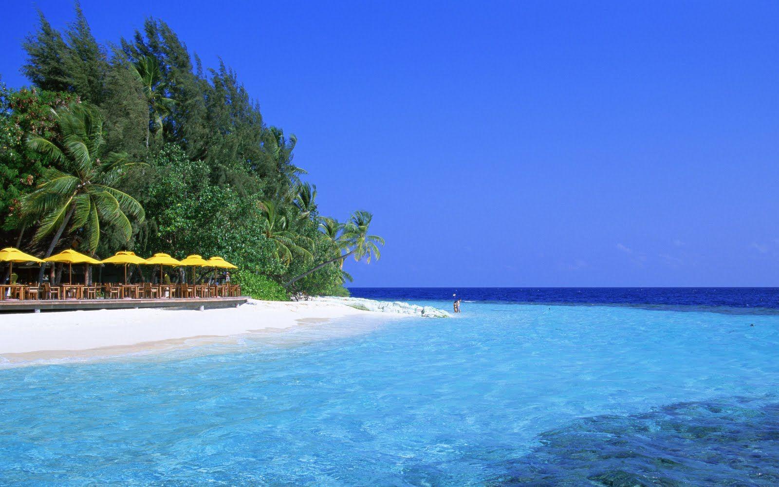 Hd Ocean Scene Wallpapers Wallpapersafari Beach