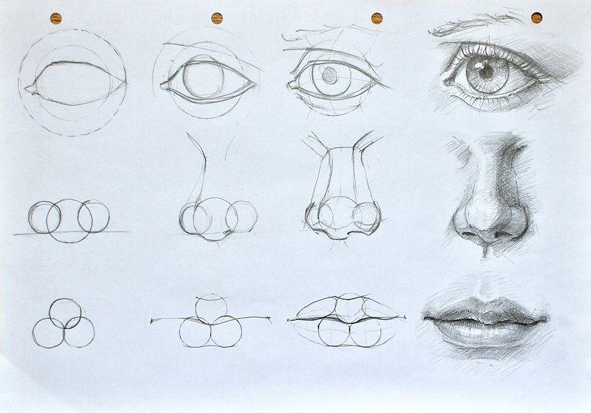 6fbb0762eefa rajz lépésről lépésre | drawing | Drawings, Art, Art drawings