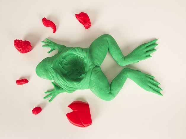 The MakerBot Frog Dissection Kit is the first 3D printable