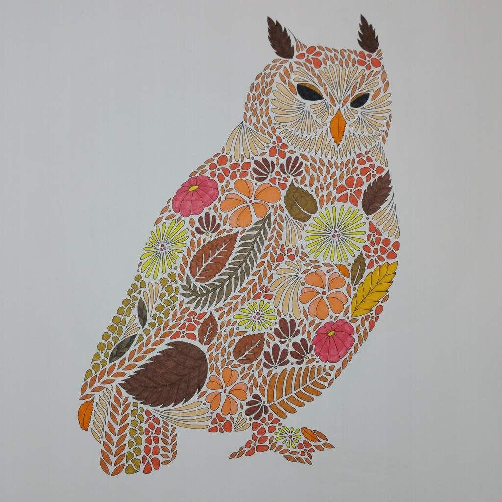 Coloriage issu du livre animaux fantastiques millie - Dessin animaux fantastiques ...