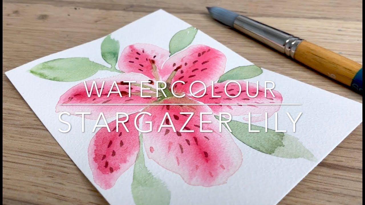 Watercolour Stargazer Lily Youtube Watercolor Stargazer Lily