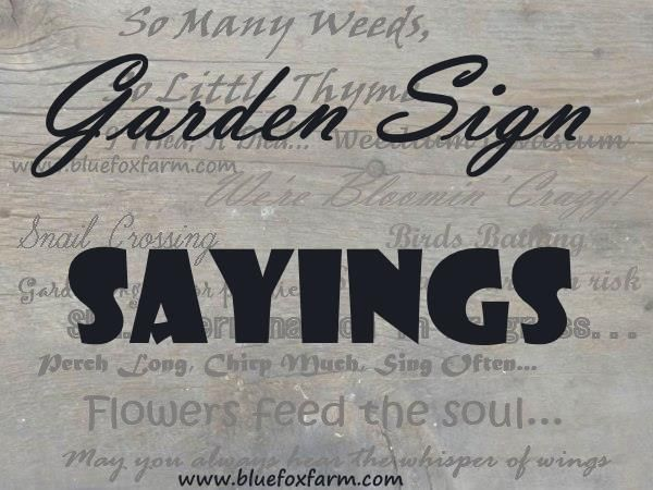 Just A Few #gardensignsayings To Paint On Rustic Garden Signs.