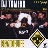 Beat of Life [12 inch Vinyl Single]