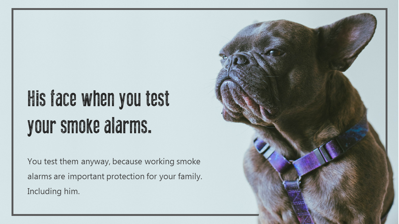 Animals may not like the sound of smoke alarms, but