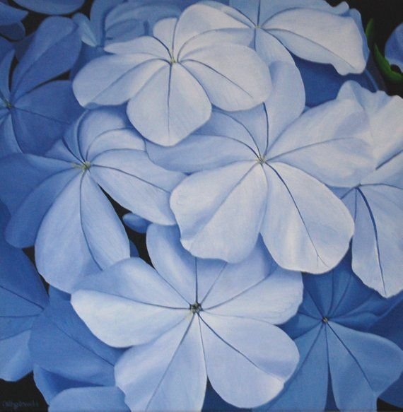 Blue Flower Art, Plumbago Plant, Blue Floral Wall Art, Blue Painting, Acrylic Painting on Canvas, Original Art, Botanical Art, Floral Decor #blueflowerwallpaper Blue Flower Painting - Blue Flower Wall Art Acrylic Painting Modern Decor Floral Wall Art #blueflowerwallpaper
