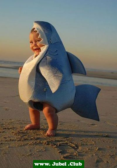 Baby Weißer Hai