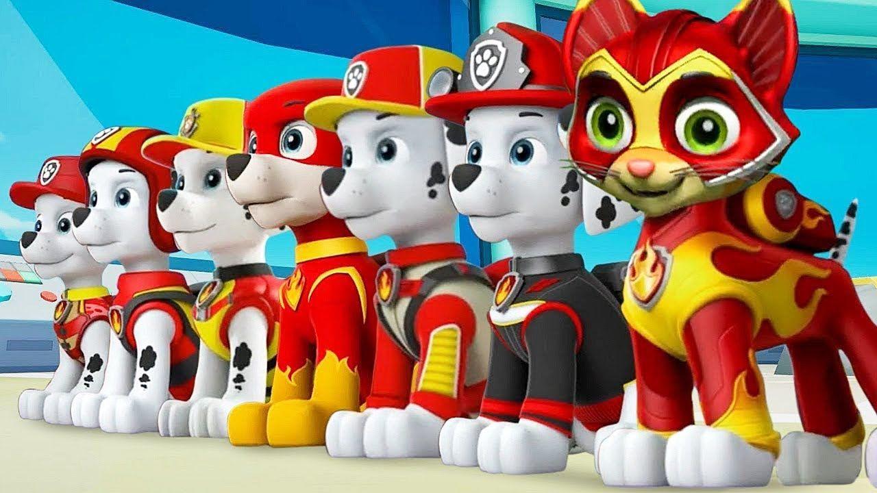 Patrulha Canina Em Portugues Desenhos Super Filhotes Salvam Os Coelhinhos Patrulha Pata Patrulha Canina Filhotes