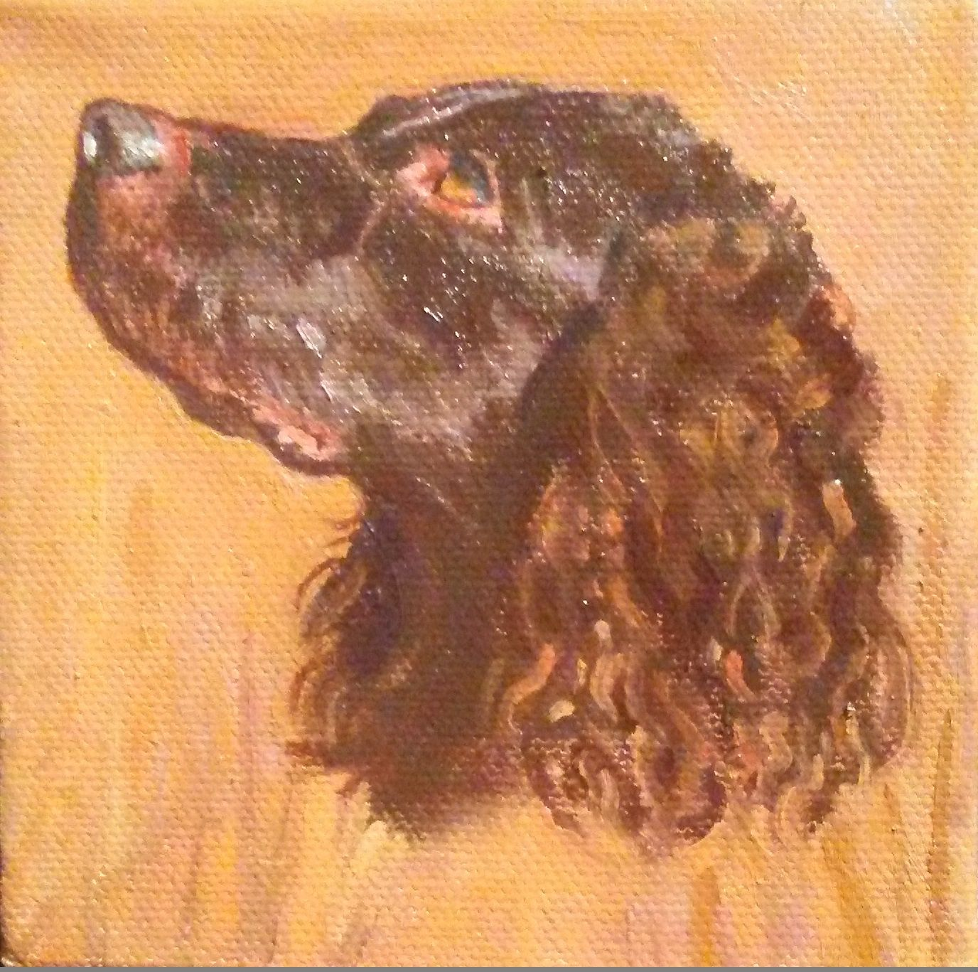 Nancy Pellatt S 4 X 4 Oil Of A Boykin Spaniel State Dog Of S C