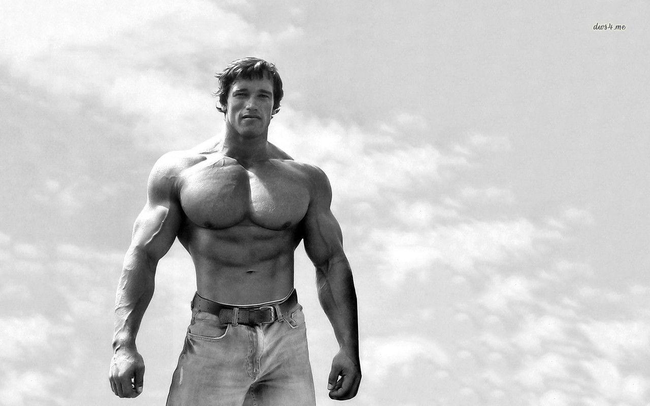 Arnold Schwarzenegger Hd Wallpaper Wallpapers Pinterest In 2020