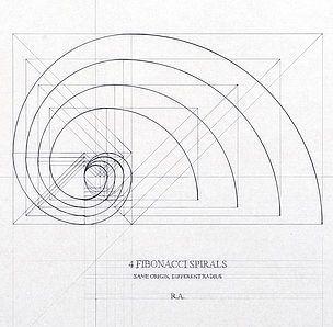 Fibonacci Spirals By Rafael Araujo Sezione Aurea Grafici Leonardo Da Vinci