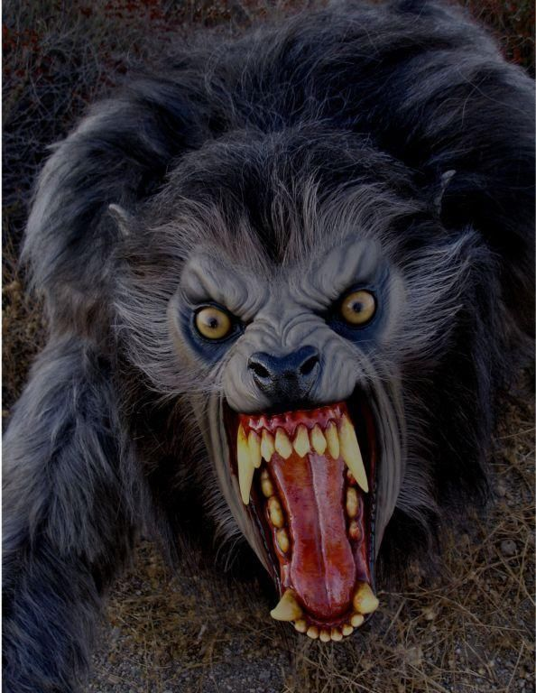 movie prop lifesize awil american werewolf wolfman wolf fx horror halloween new