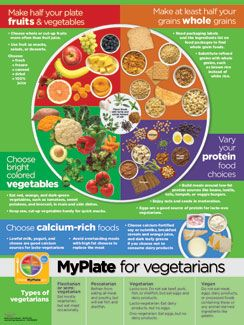 myplate for vegetarians poster in 2019 nutrition quiz