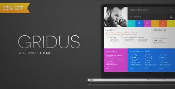 Download and review of Gridus vCard CV Resume WordPress one of