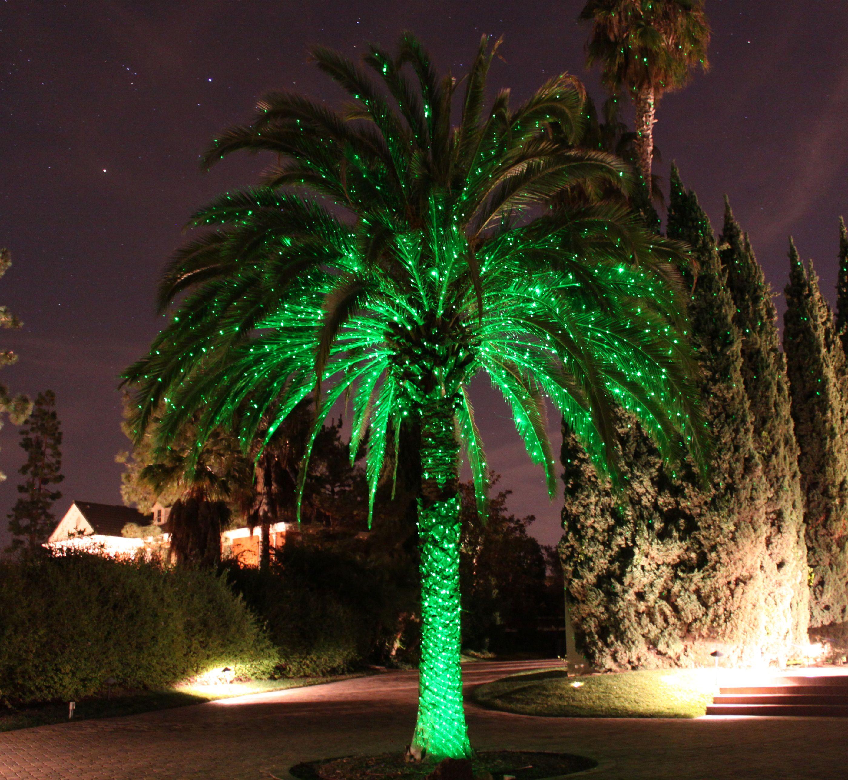 Motion Green Laser Light Blisslights Laser Lights Landscape Lighting