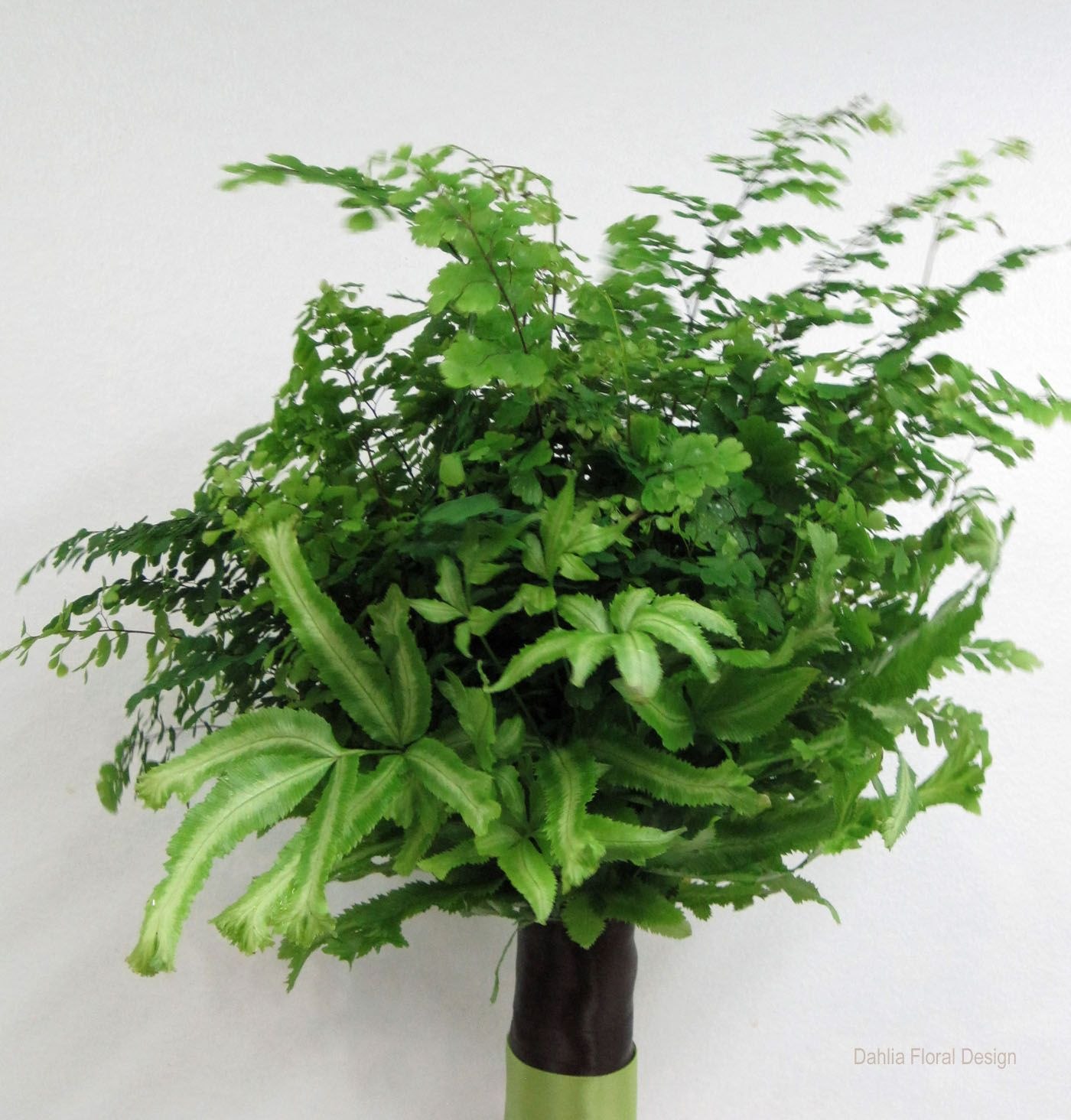 Vermont Wedding Flowers: Different Kinds Of Fern Foliage
