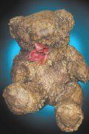 Fossilized teddy bear?