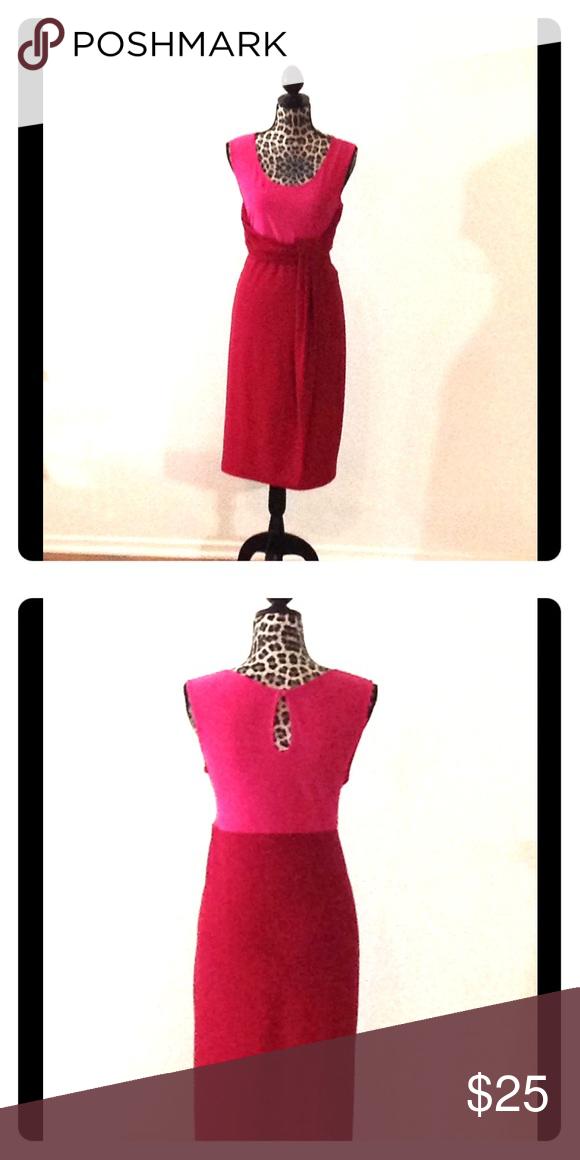 2-toned Cocktail Dress Two-toned pink cocktail dress Shavonne Dorsey Dresses Midi