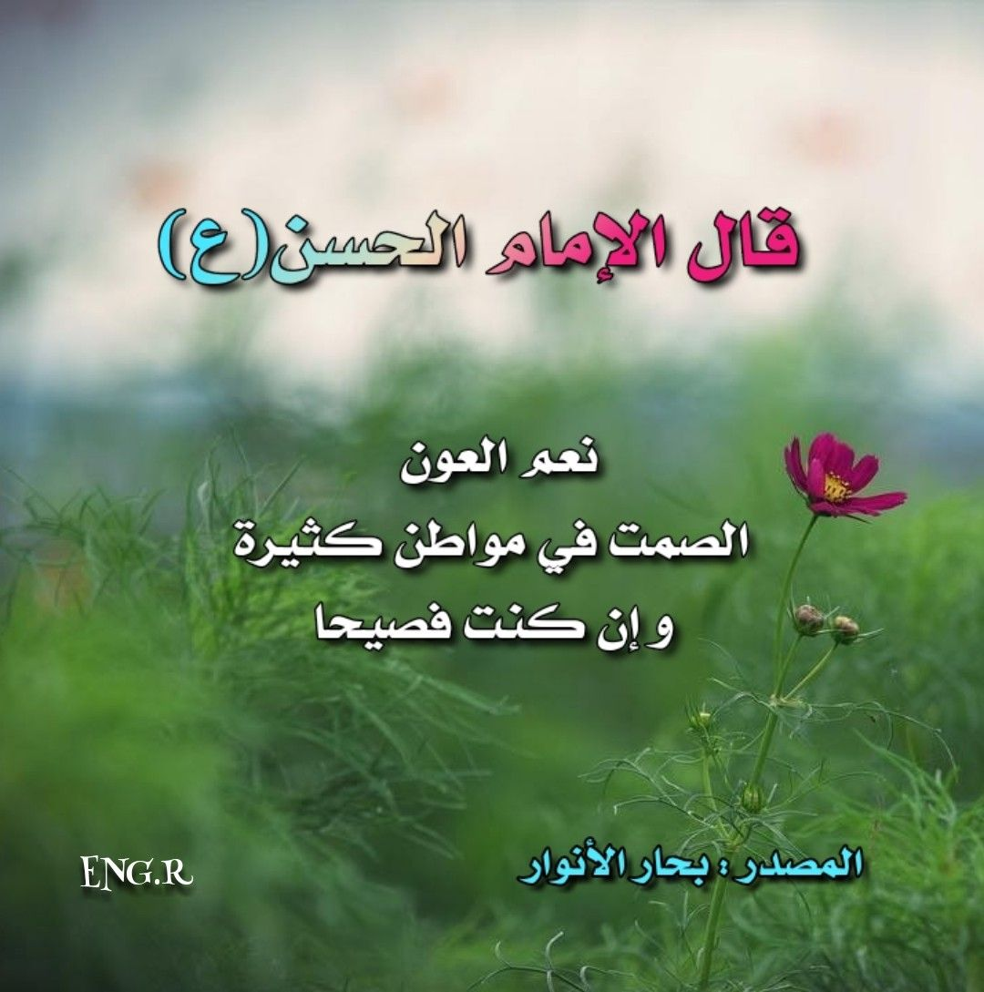 Pin By Eng R On اقوال اهل البيت عليهم السلام Funny Arabic Quotes Ali Quotes Proverbs Quotes