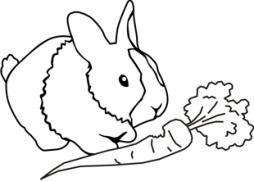 ausmalbilder tiere zum ausdrucken 07 | dorf | pinterest | ausmalbilder tiere, ausmalbilder und