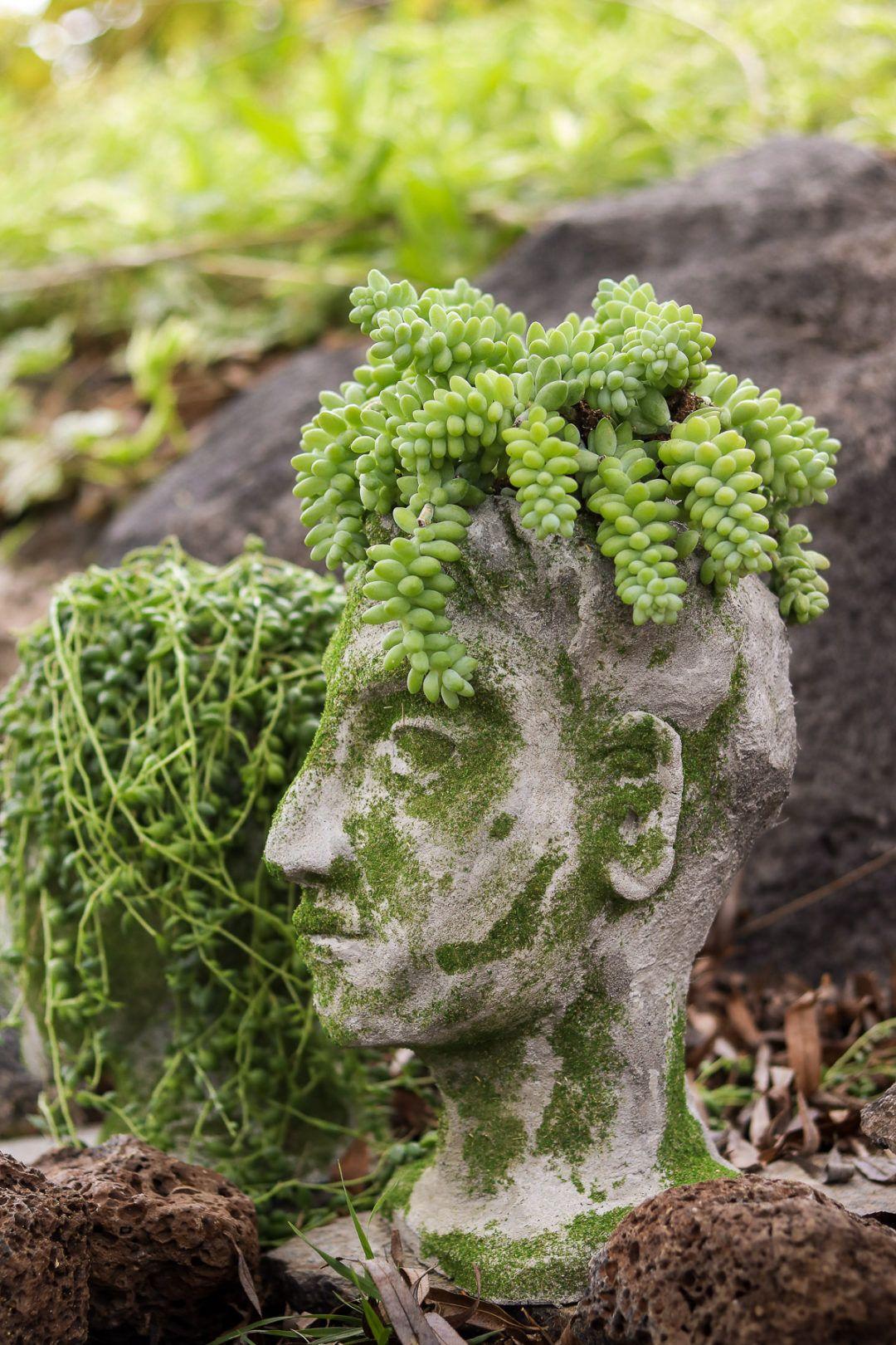 Diy Head Planter Using Concrete Garden Diys Head 640 x 480