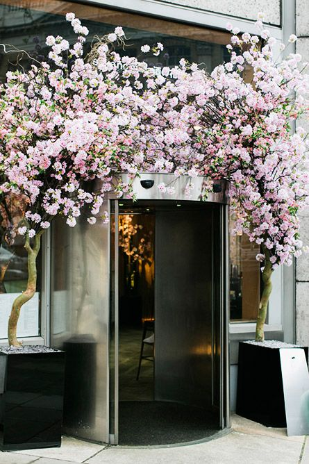Sakura   retail space  cafe  Hotellerie Jardins Deco