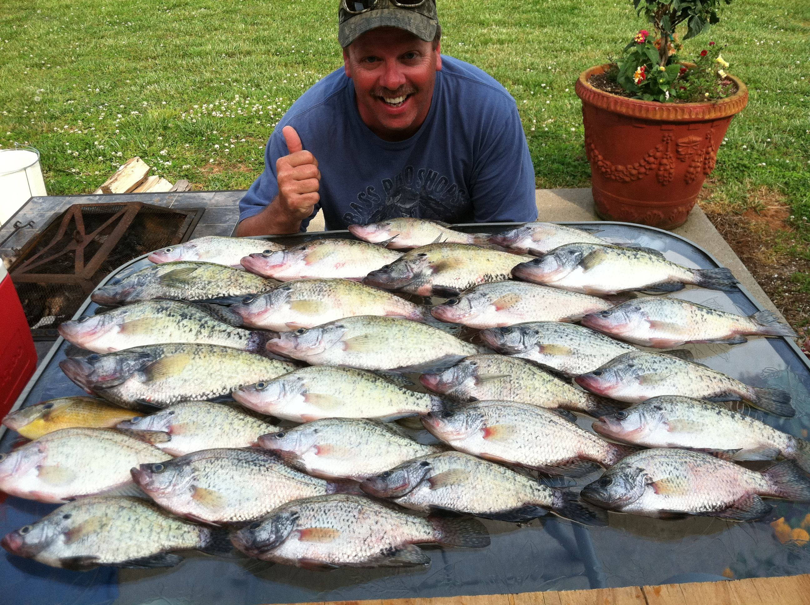 Crappie catch kentucky lake fishing pinterest for Ky fishing license