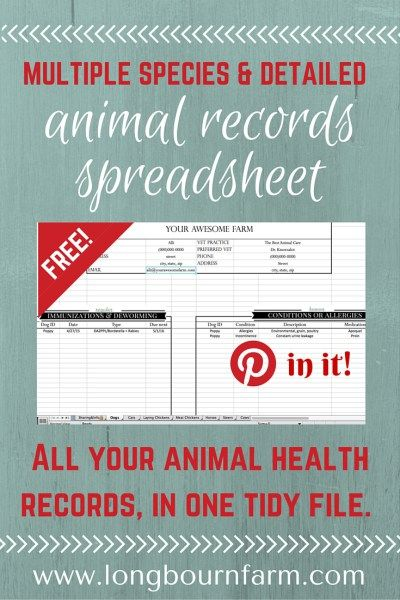 Free Animal Records Spreadsheet Homesteads, Animal and Farming - spreadsheet