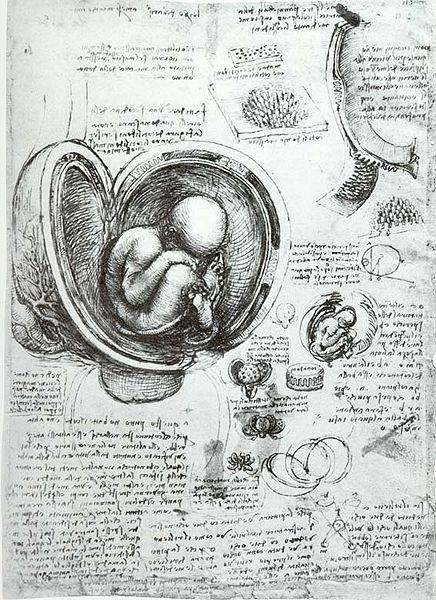 Eprofessor Leonardo Da Vinci Ideias Para Caderno De Desenho E