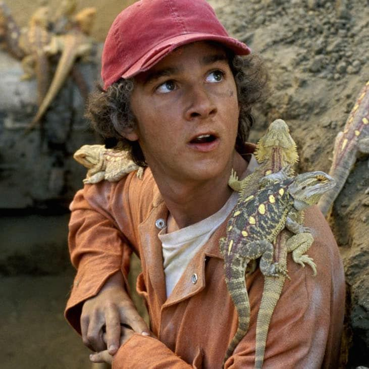 """This Is What The Cast Of """"Holes"""" Looks Like Now 
