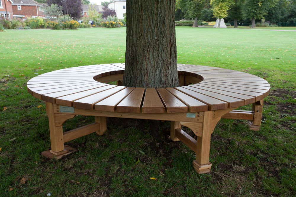Build A Bench Around A Tree Tree Seat For War Memorial Park In Romsey Hampshire September