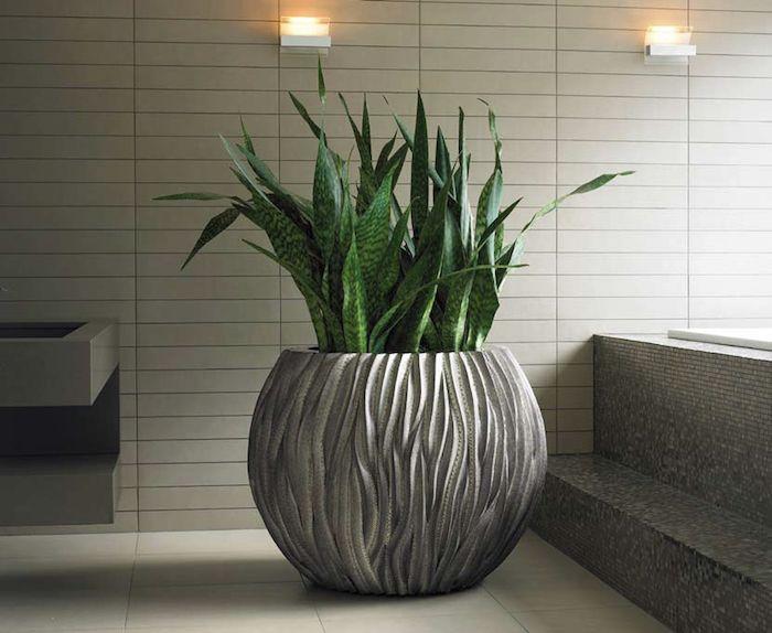 1001 ideen f r zimmerpflanzen f r wenig licht einzigartige zimmerdeko f r eine gem tliche. Black Bedroom Furniture Sets. Home Design Ideas
