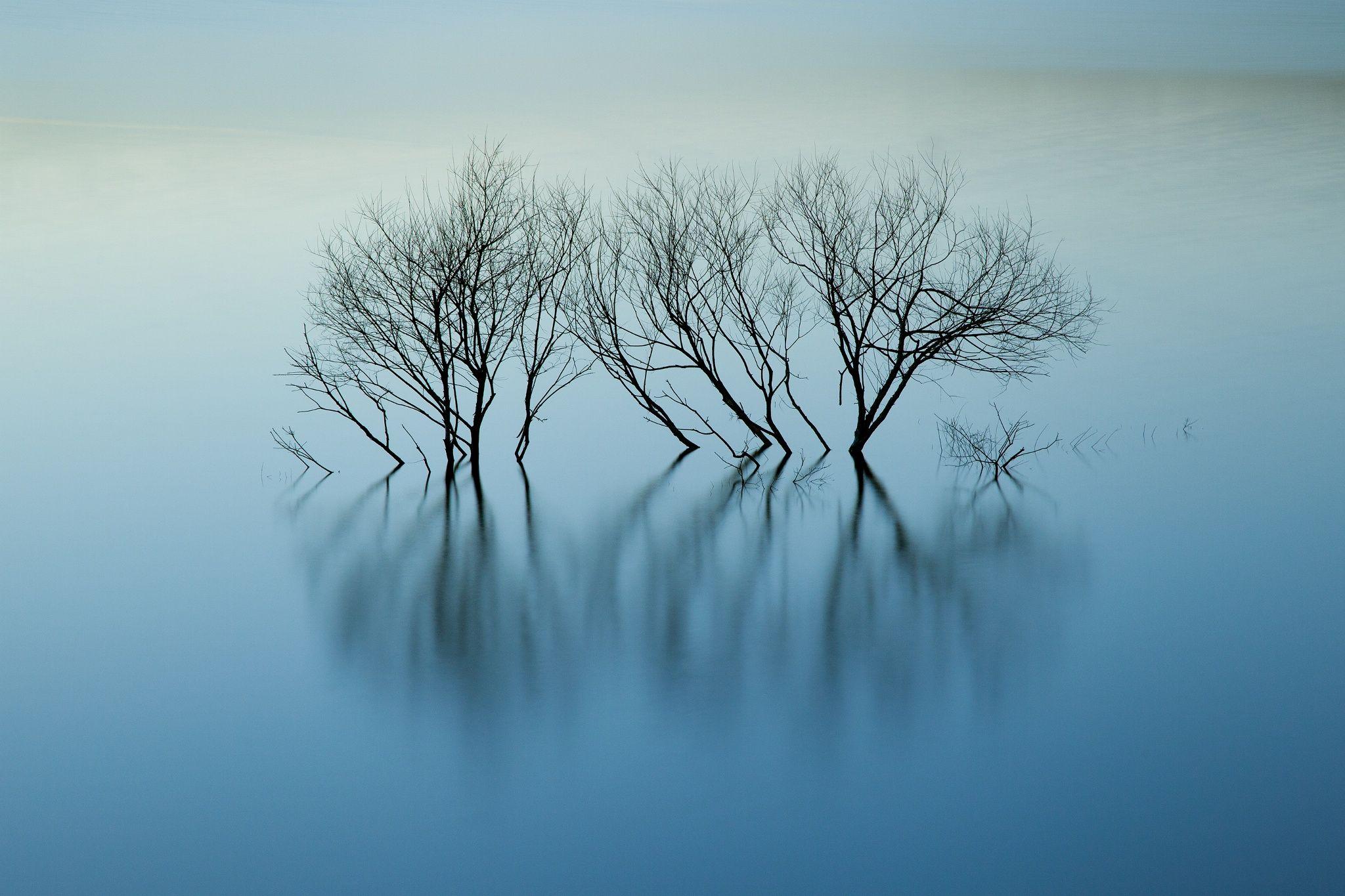 Photograph I Hear the Water Dreaming by Katsuhiko Honda on 500px