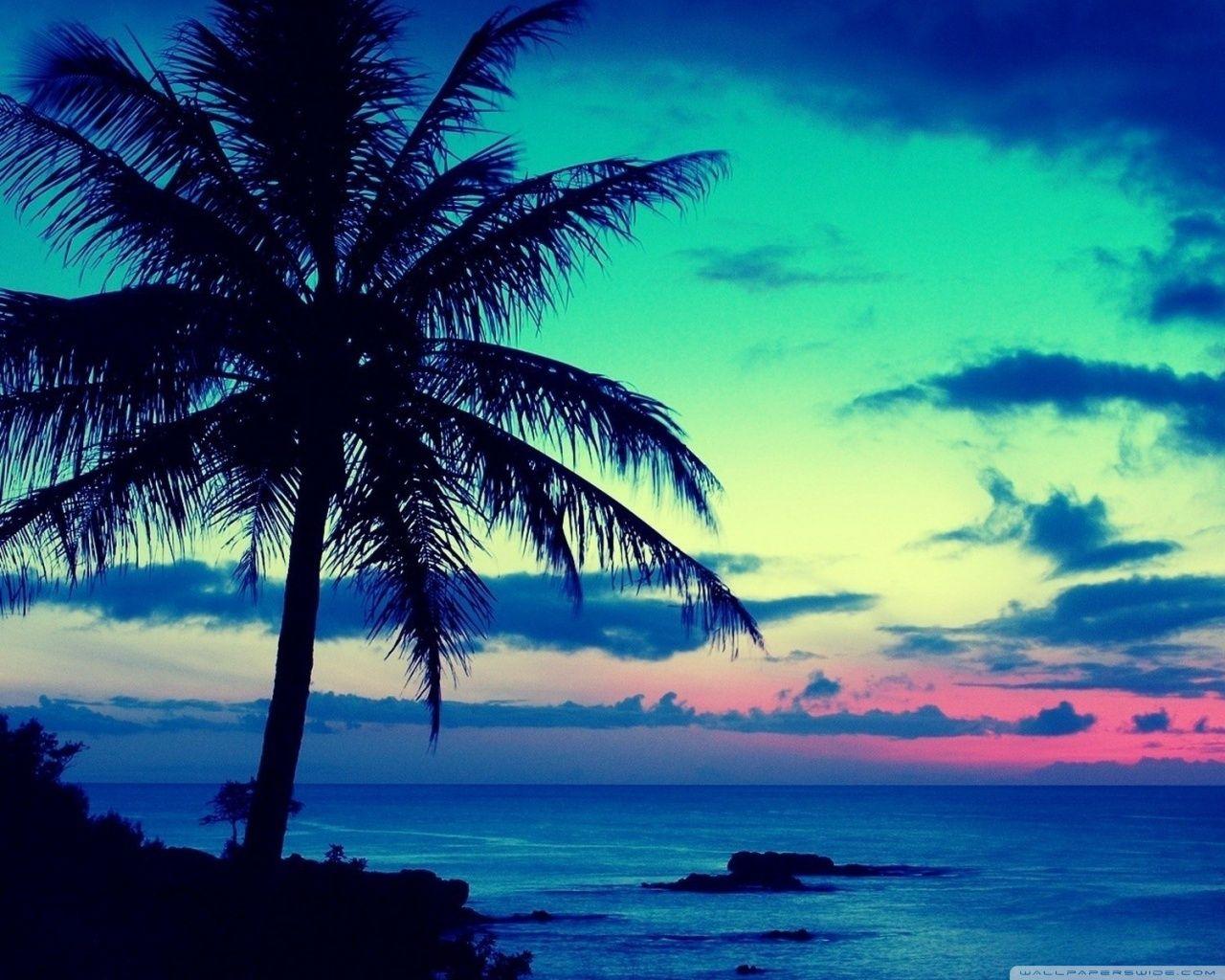 Beautiful Tropical Island Sunrise Hawaii Manzara Seyahat Inanilmaz Doga
