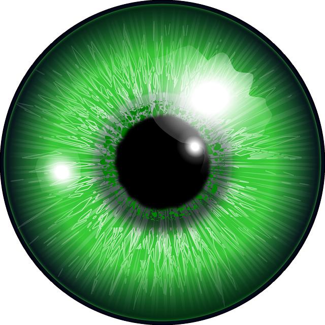 Free Image on Pixabay - Eye, Green, Iris, Eyeball, Looking