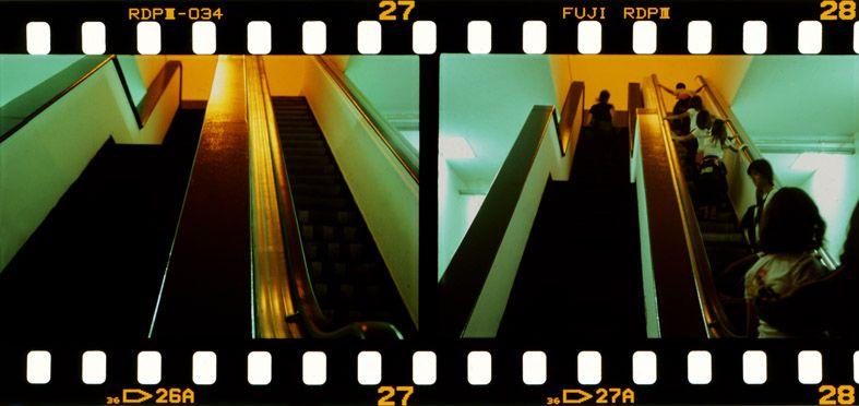 São Paulo - Bienal - 35mm - © Kelly Fuzaro #saopaulo