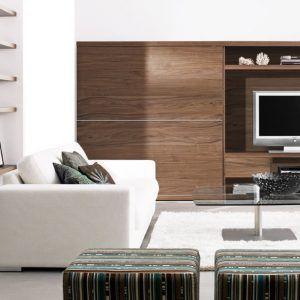 Furniture Of Living Room  Httpcandland  Pinterest Entrancing Living Room Showcase Designs Images 2018