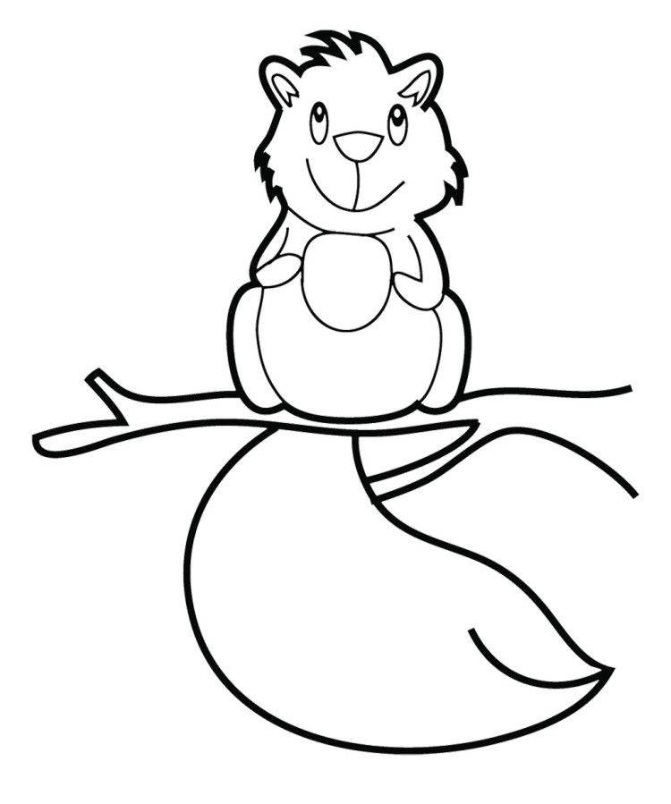 Cute Baby Squirrel Coloring Pages | Pattern Design Ideas | Pinterest