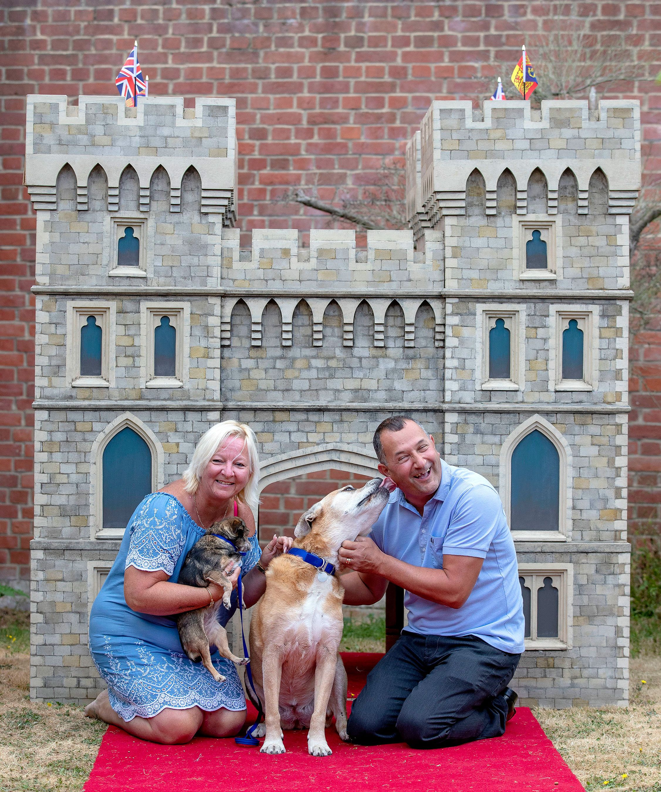 Lottery Winner Donates Pooch Palace Made To Celebrate Harry And