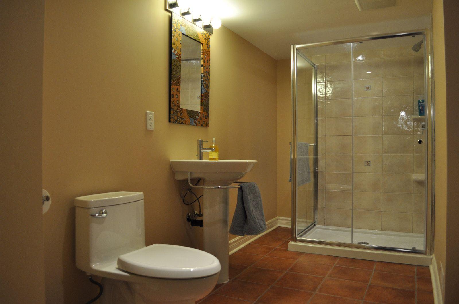 30 Amazing Basement Bathroom Ideas For Small Space  Basement Mesmerizing Basement Bathroom Design Ideas Design Inspiration