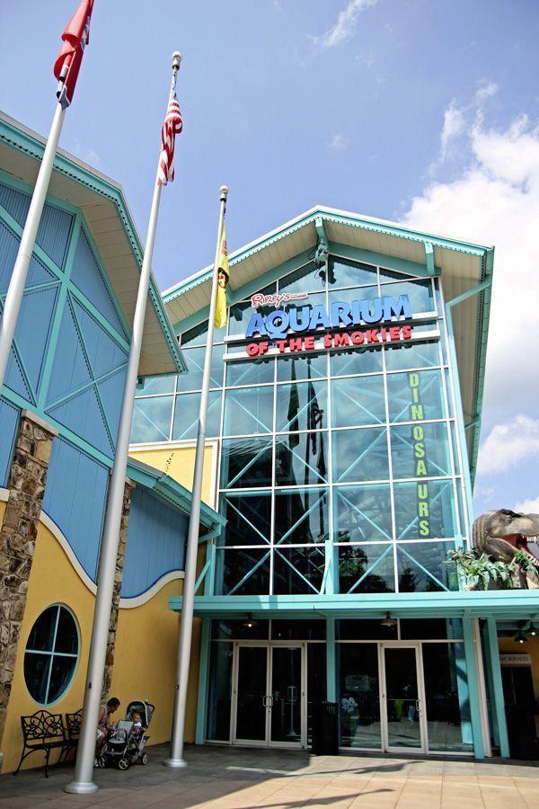 Ripley's Aquarium of the Smokies - Gatlinburg, Tennessee ...