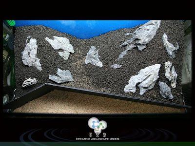 Uso de Pedras nos Aquarios