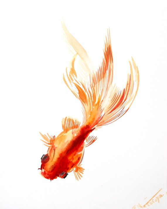 Goldfish Original Asian Style Watercolor Painting 10 X 8 In